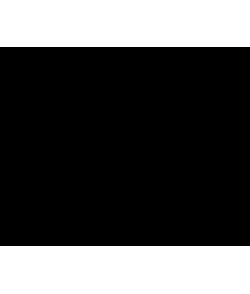 BANDEJA INFERIOR (VERDE) TIDY TRAY