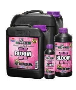 X-Bloom - Acelerador de...