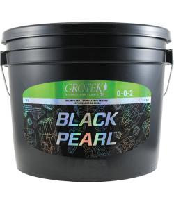 Imagen secundaria del producto Black Pearl