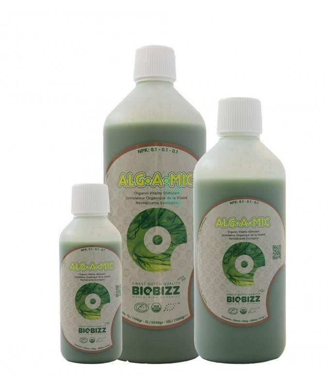 Imagen principal del producto Alg