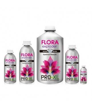 Flora Exploder - Cogollos...