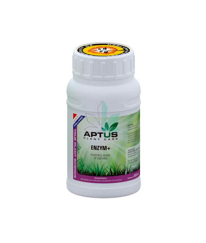 Imagen principal del producto Enzym+