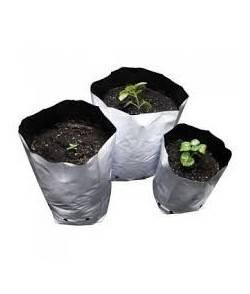 Bolsas de Cultivo de...
