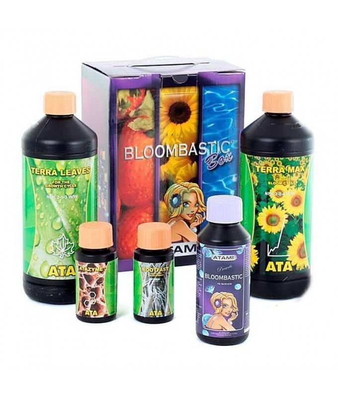 Imagen principal del producto Bloombastic Terra Box