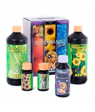 Bloombastic Terra Box - Kit...
