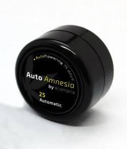 Imagen secundaria del producto Auto Amnesia