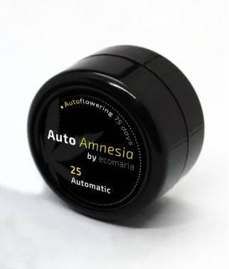 Auto Amnesia  - Semillas...