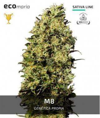 M8 - Fotodependiente y...