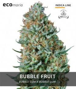 Bubble Fruit -...