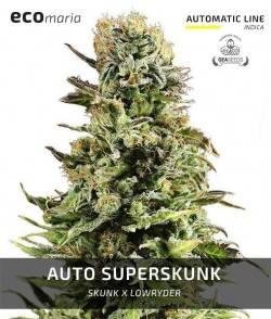 Imagen secundaria del producto Auto Super Skunk