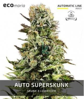Auto Super Skunk - Semillas...