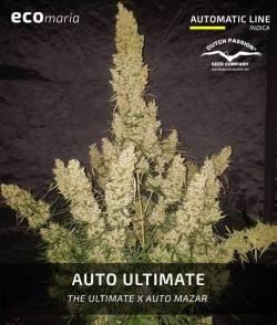 Auto Ultimate - Automática...