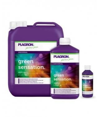 Green Sensation - Para una...