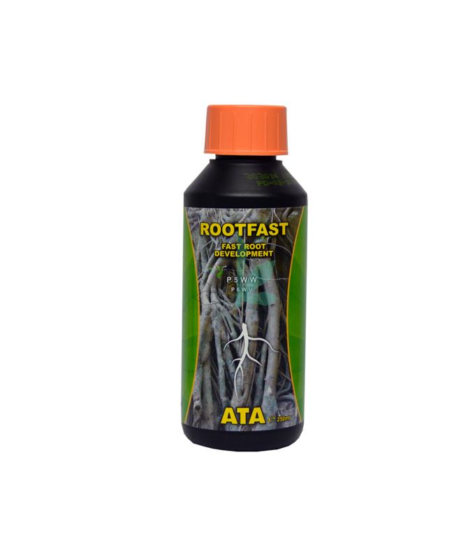 Imagen principal del producto Ata Rootfast