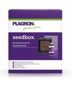 SeedBox - Kit para germinar...