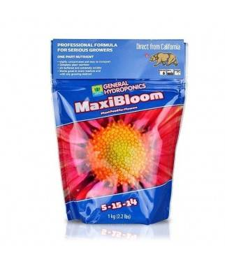MaxiBloom - Engorda...