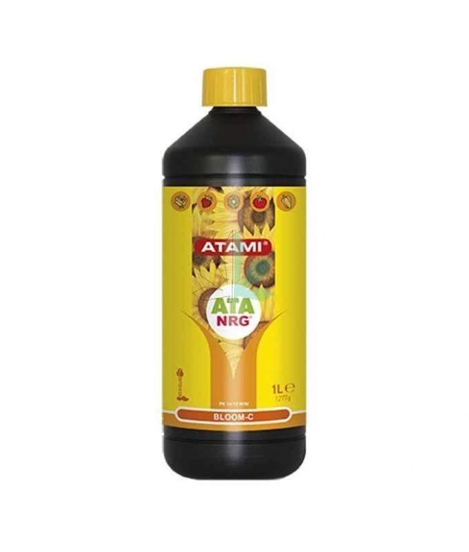 Imagen principal del producto NRG Bloom