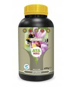 NRG Upgrade - Microvida y...