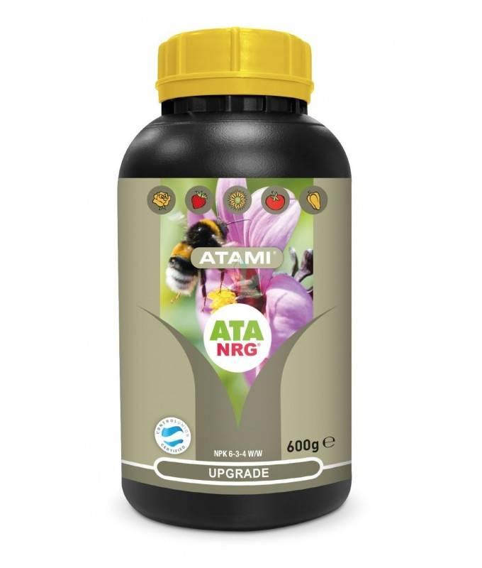 Imagen principal del producto NRG Upgrade