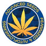 Advanced Seeds - TODAS las genéticas - Regulares y Feminizadas | Ecomaria