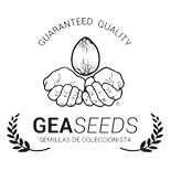 Gea Seeds - Experiencias + Venta - Autos y Feminizadas | Ecomaria