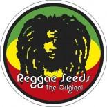 Reggae Seeds - El Mejor banco para interior | Ecomaria