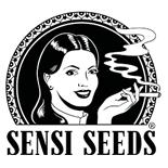 Sensi Seeds - Catálogo Completo -  Automáticas + Fotodependientes | Ecomaria