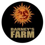 Barneys Farm - Catálogo Completo + Opiniones + Venta Online | Ecomaria