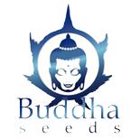 Buddha Seeds - Catálogo Completo -  Automáticas + Fotodependientes | Ecomaria
